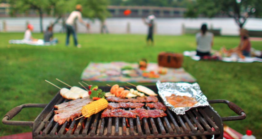 10 Parks Suitable For Bbq Picnics In Turkey Proact Group